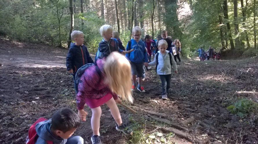 Septembre 2019: Sortie en forêt pour les M2-M3