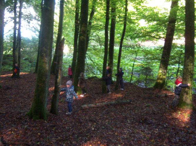 Octobre 2019: Sortie en forêt pour les M2-M3